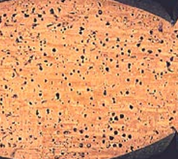 Traitement de la vrillette du bois l 39 horloge de la mort for Traitement contre la vrillette