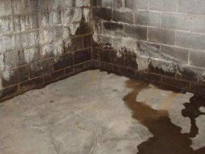 infiltration d'eau dans la cave